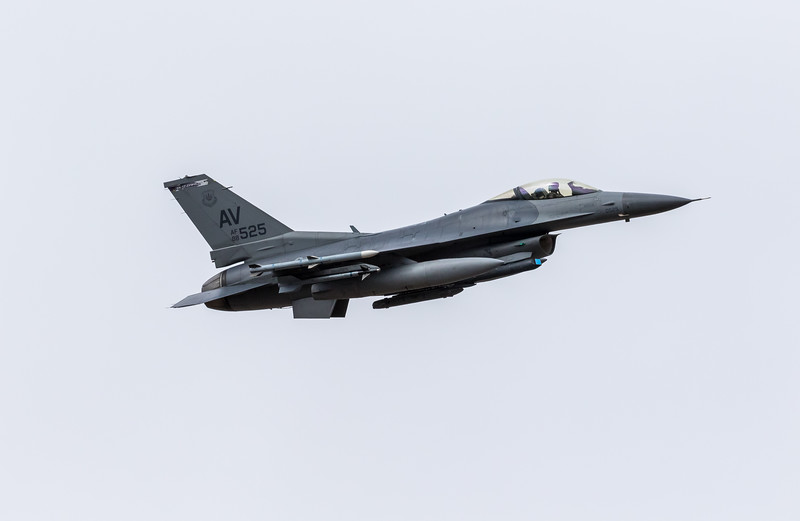 "-(Aircraft) General Dynamics F-16CM Fighting Falcon<br /> -(Nation & Service) United States Air Force<br /> -(Squadron) 510th Fighter Squadron ""Buzzards""<br /> -(Home Base) Aviano Air Base, Italy"