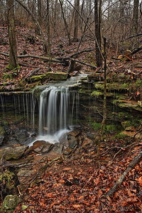Along the Pig Trail Scenic Byway - near Ozark, Arkansas - 2/10/19