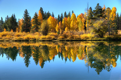 Fall Color at Oxbow Bend - GTNP - Wyoming