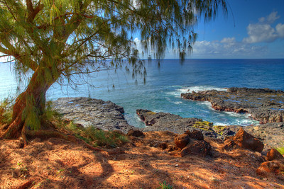 Kicking back in the shade on the island of Kauai, Hawaii.