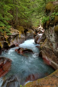Avalanche Creek - Glacier National Park, Montana