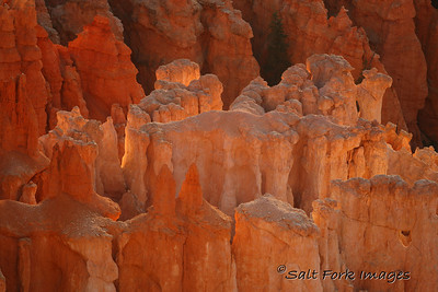 Best of 2012 - Early morning glow in Bryce Canyon National Park - Utah
