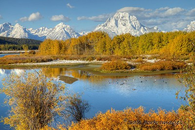 Fall color at Oxbow Bend - Grand Teton National Park, Wyoming