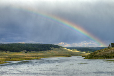 Hayden Valley - Yellowstone National Park - Wyoming