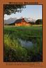 Wyoming Meadows