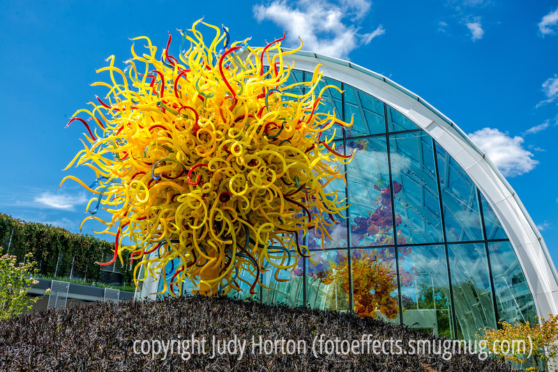 At the Chihuly Exhibit in Seattle Center