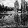 Evening reflections in a swampy area near Canyon Campground in Yellowstone National Park in Wyoming