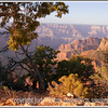 Early morning sun hits the rock formations below the North Rim of the Grand Canyon