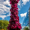 Chihuly Sculpture in Seattle Center