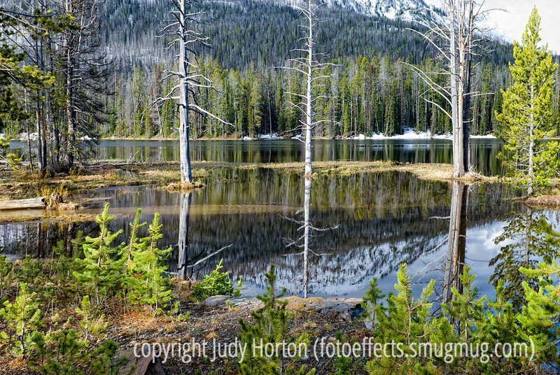 Reflections in Sylvan Lake in eastern Yellowstone National Park in Wyoming; best viewed in the largest sizes