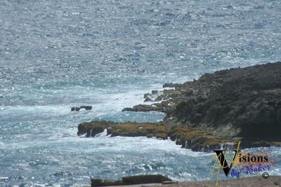 Aruba'05_0051