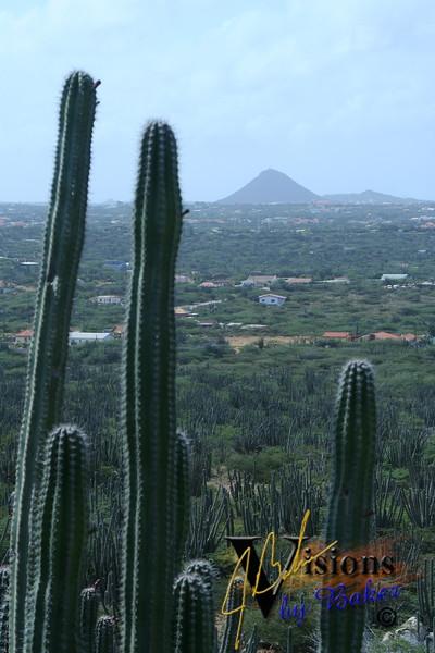 Aruba'05_0043