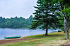 Solitaire Lake, Limberlost Forest and Wildlife Reserve, E of Huntsville On