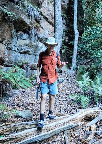 Snake Canyon - 9915