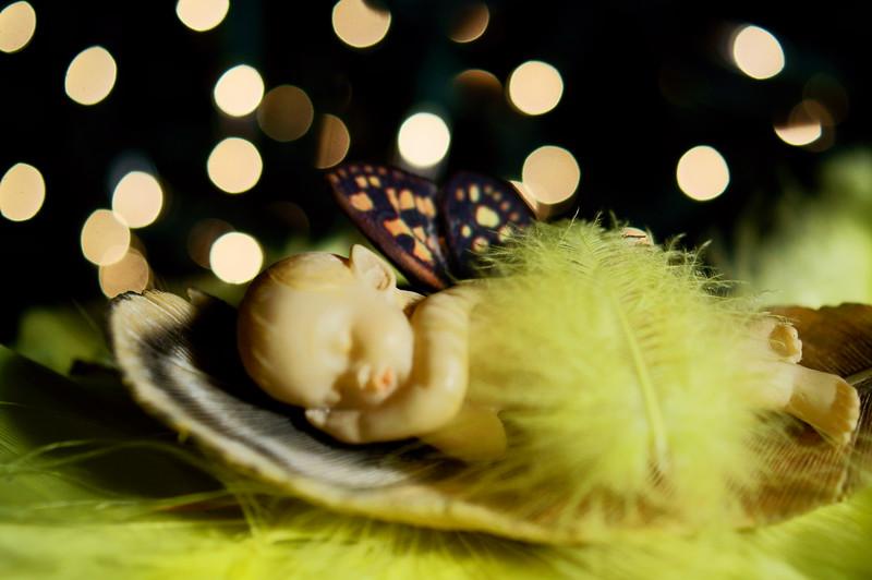 Baby Fairies Dream In Bokeh