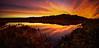 Potter marsh sunrise