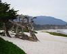 Carmel-by-the-Sea beach on Monterey Bay, California - Feb 09