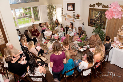 (879) Heather's Bridal Shower 1-28-17 Photography by Chris Miller