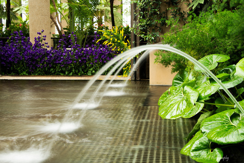 Smooth Water<br /> Longwood Gardens <br /> Kennett Square, Pennsylvania