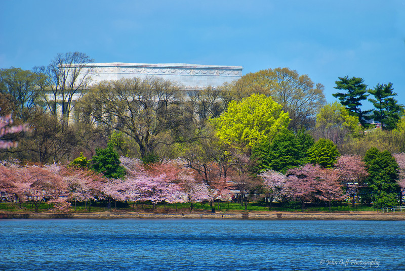 Lincoln Memorial<br /> Cherry Blossom Festival<br /> Washington D.C.