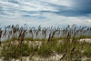 Wild Oats<br /> Bald Head Island, North Carolina