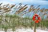 Rescue<br /> Bald Head Island, North Carolina