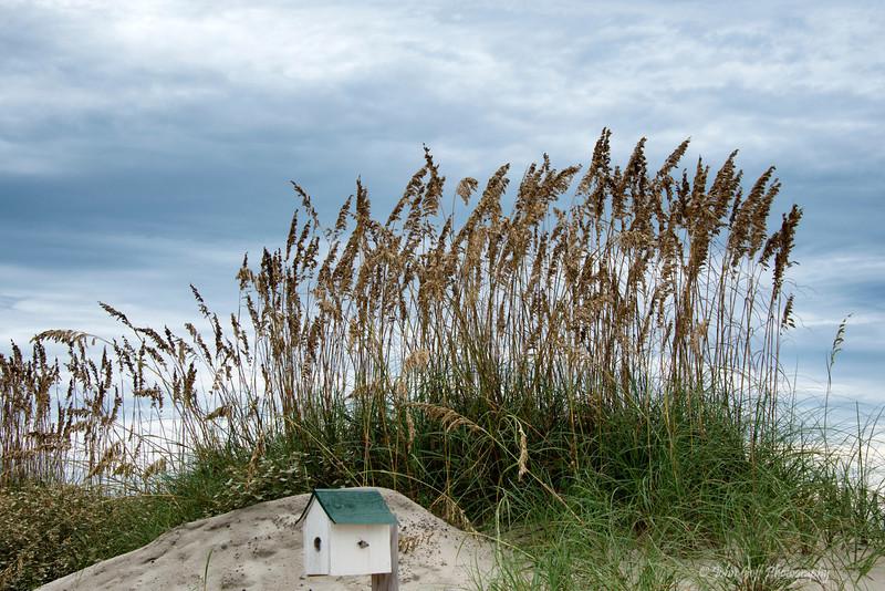 Bird House On The Beach<br /> Bald Head Island, North Carolina