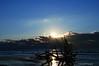Sunrise Over A Beached Tree<br /> Botany Bay Plantation   <br /> Edisto Island,  South Carolina.