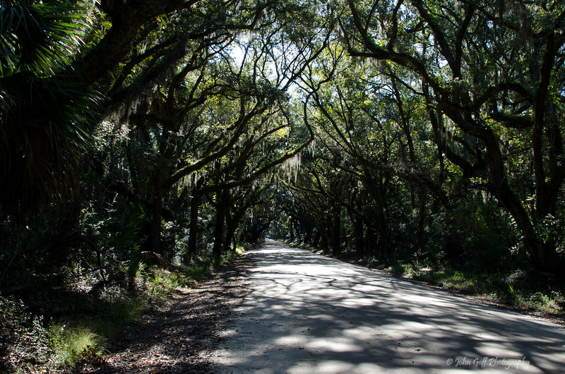 The Entrence<br /> Botany Bay Plantation   <br /> Edisto Island,  South Carolina.