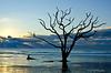 Sun Rays<br /> Botany Bay Plantation   <br /> Edisto Island,  South Carolina.