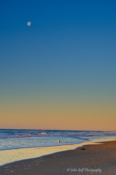 The Moon with Bird<br /> Cape Hatteras, North Carolina