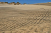 Sand Waves<br /> Cape Hatteras, North Carolina