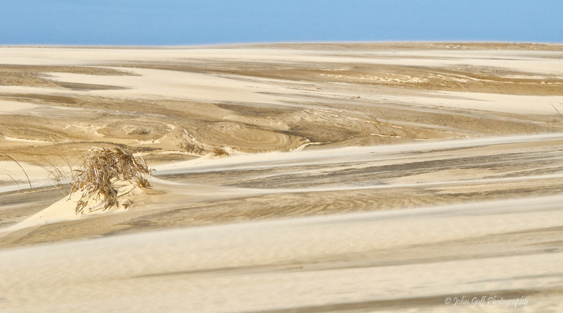 Dune Scape<br /> Cape Hatteras, North Carolina