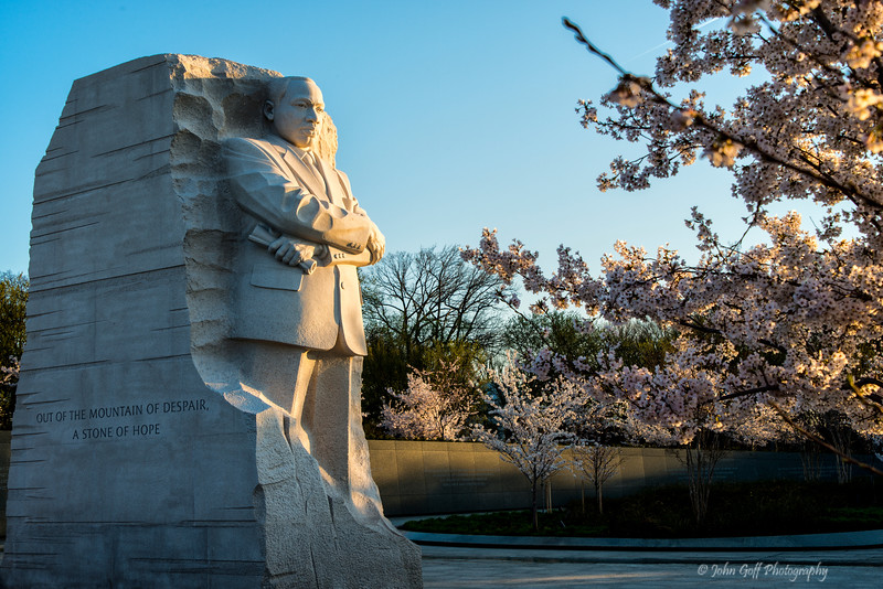 A Stone Of Hope<br /> Cherry Blosson 2014<br /> Washington D.C.