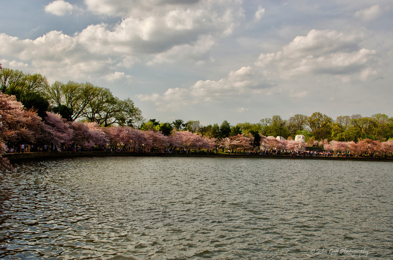 Basin<br /> 2012 Cherry Blossom Festival,  Tidal Basin<br /> Washington D.C.