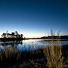 Morning Light<br /> Chincoteague National Wildlife Refuge<br /> Chincoteague, Virginia