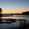 The Marsh<br /> Chincoteague National Wildlife Refuge<br /> Chincoteague, Virginia