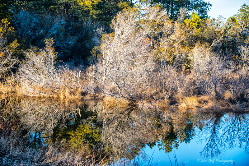 Look In The Water<br /> Chincoteague National Wildlife Refuge<br /> Chincoteague, Virginia