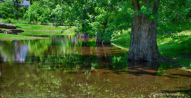 Reflections In A Pond<br /> Grist Mill, Maryland