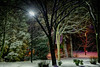 Light In The First Snow <br /> Severna Park, Maryland