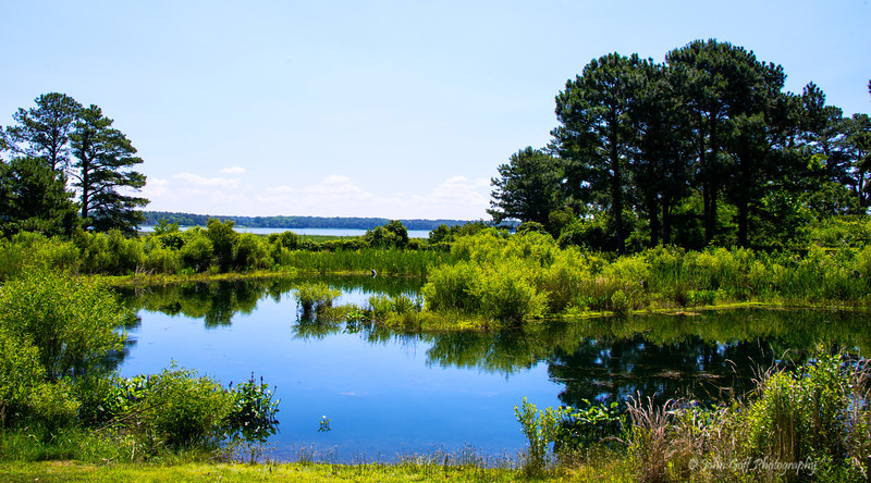 Peaceful Lake<br /> Chesapeake Bay Environmental Center<br /> 606 Discovery Lane, Grasonville, MD