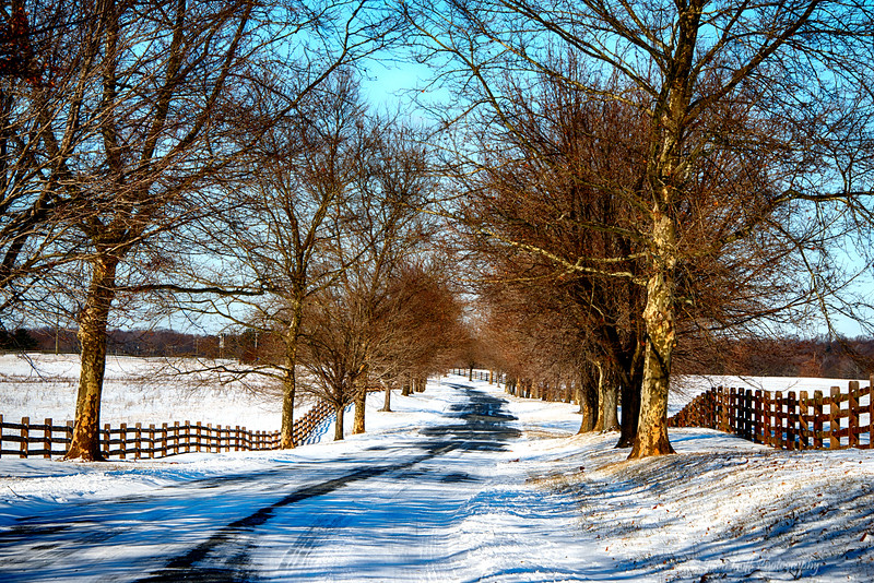 Down The Road<br /> Eastern Shore After Snow Storm