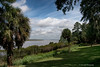 View From The Main House<br /> Hobcaw Barony Plantation<br /> Georgetown, South Carolina