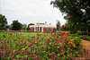 Monticello With Flowers<br /> Plantation of Thomas Jefferson<br /> Charlottesville, Virginia