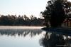 Morning At Le Petite Ferme Planation<br /> Le Petite Ferme Planation<br /> St. Michaels, Maryland