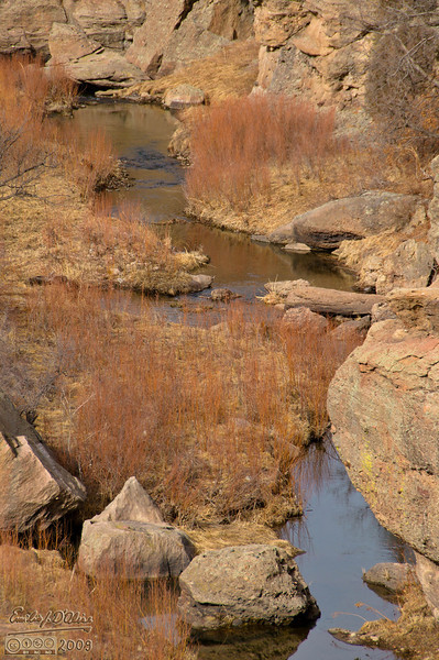 I've always been partial to those red grass remnants; I think they go well with the rocks and the water.