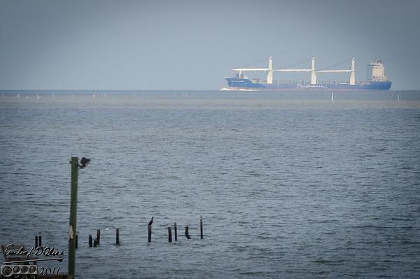 Galveston Bay Ships