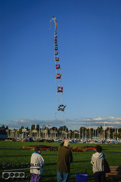 This is a homemade kite.  The old man and his wife were flying it in a park in Bellingham, WA.