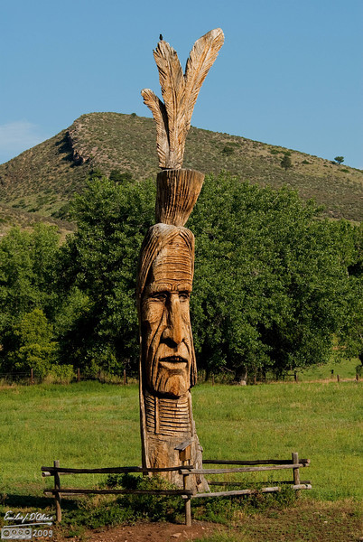 Just before entering the park, you go by a yard with this wooden Indian . . . complete with a bird on top of the feathers.