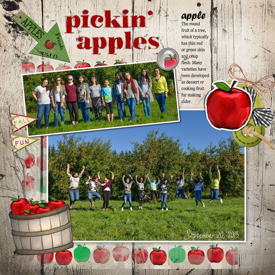 "Apple Picking 15-01 <br /> <br /> Sized at 12""x12"" 300 ppi  <br /> Printable in square sizes only"